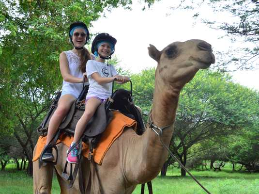 Camel safaris and rides