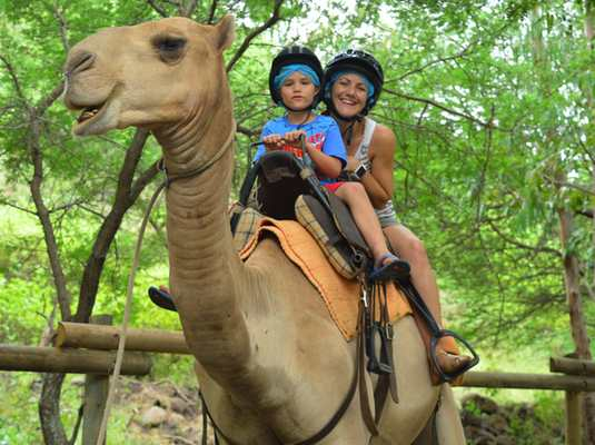Smiling on a camel ride