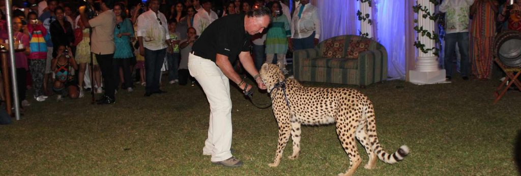 Cheetah function