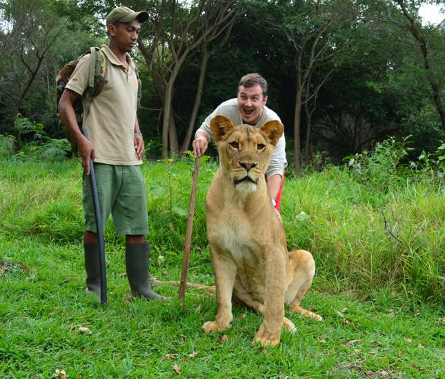 Excited guest interaction with lion