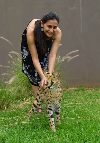 Serval interaction
