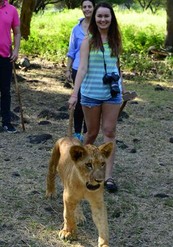 Walking with young lion