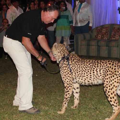 Cheetah Functions
